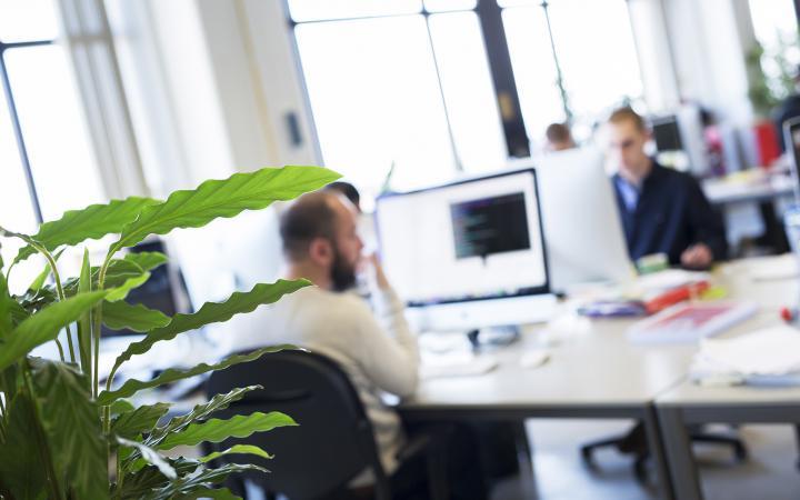 e-commerce consultancy medewerkers werken aan cases op het kantoor van Madia
