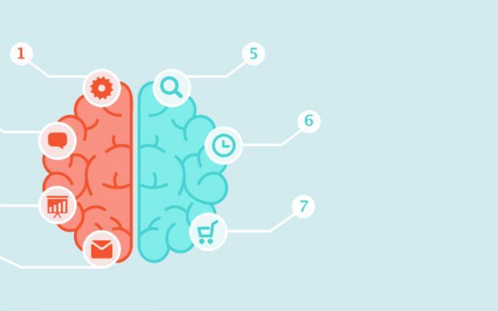 Brain met 7 labels om de principes van Cialdini te laten zien