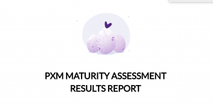 PXM Maturity assessment results